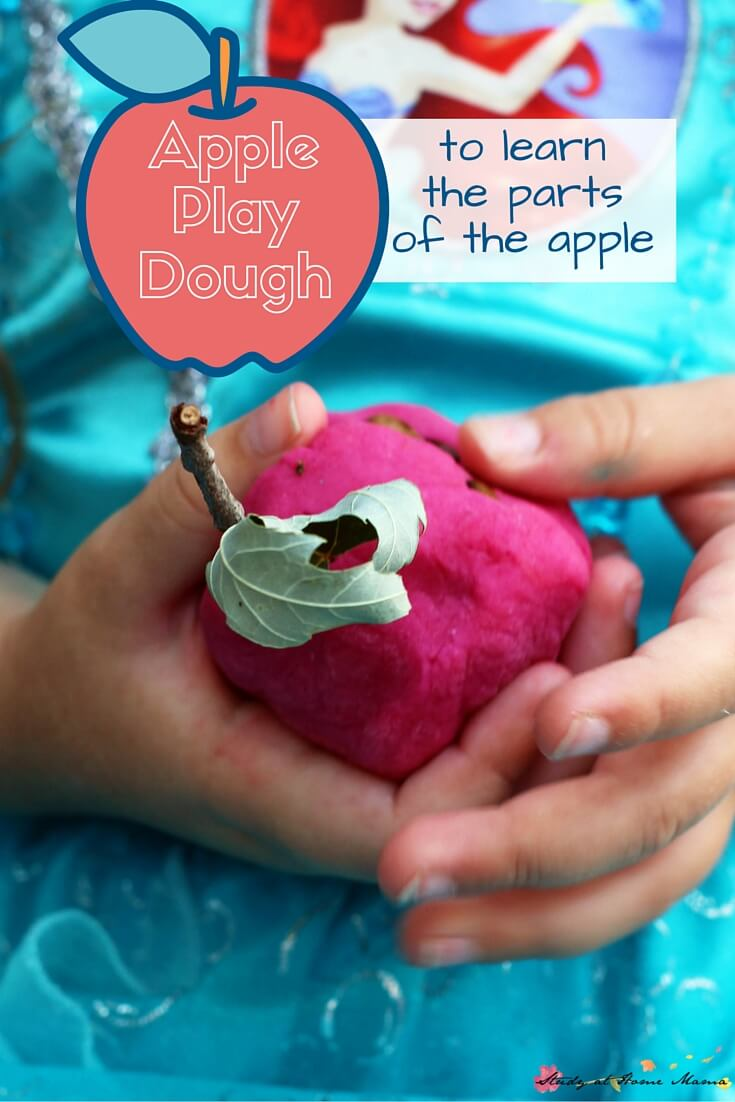 Homemade Apple Play Dough - a great way to teach children about the parts of an apple (along Montessori 3 part cards) and have fun practicing with apple cutters