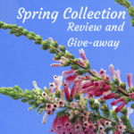 Review and Give-away: David's Tea Spring Collection