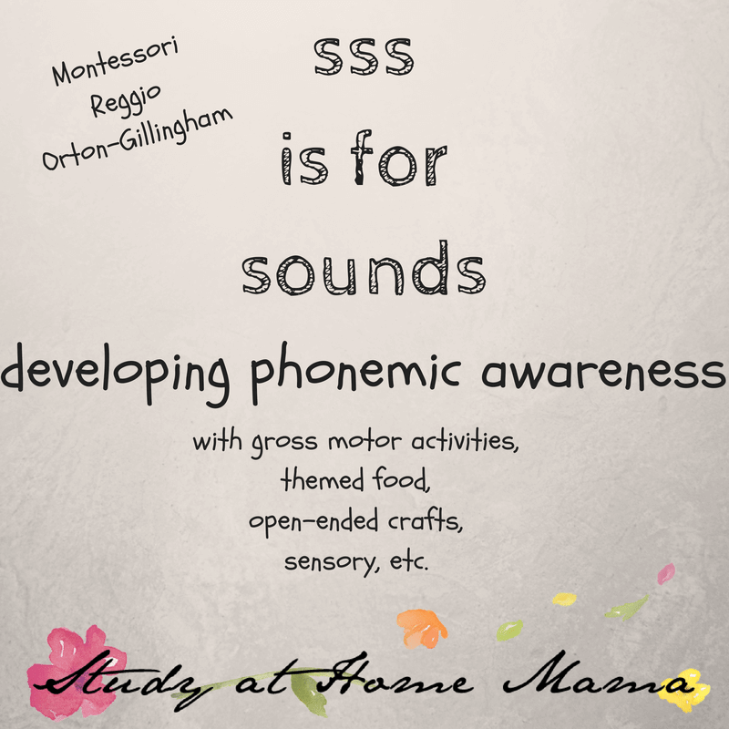 sss is for sounds #montessori #reggio #lettersounds #phonemes #orton-gillingham