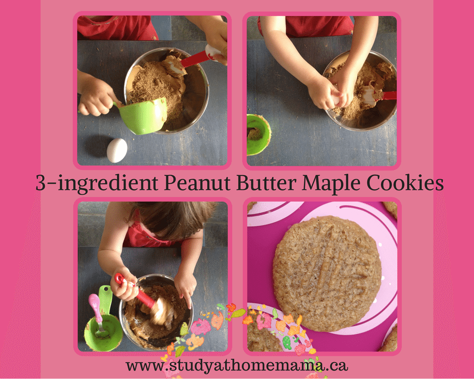 3-ingredient Peanut Butter Maple Cookies at Study-at-Home Mama