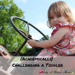 Challenging a Toddler