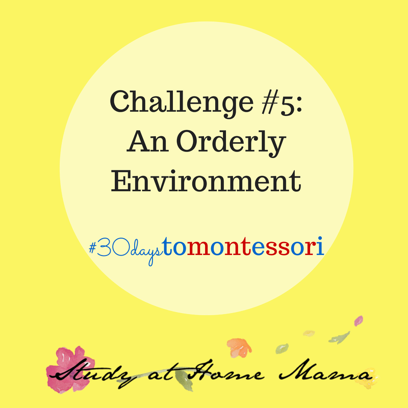 Challenge #5: An Orderly Environment