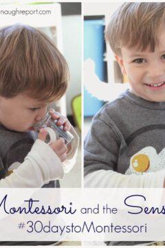 Montessori and the Senses