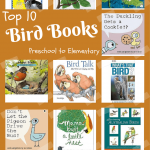 Top Ten Bird Books for Montessori Preschoolers