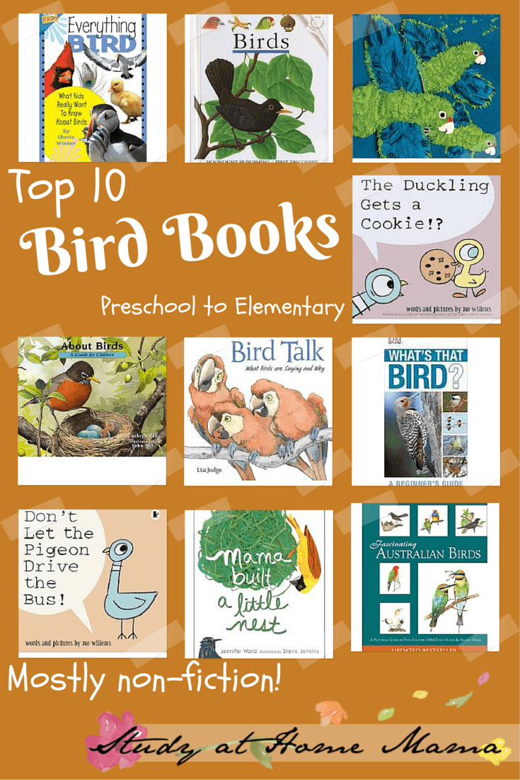 Bird Books Preschool to Elementary mostly nonfiction