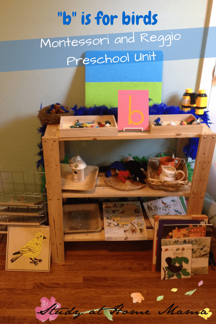 _b_ is for birds unit study #montessori #reggio