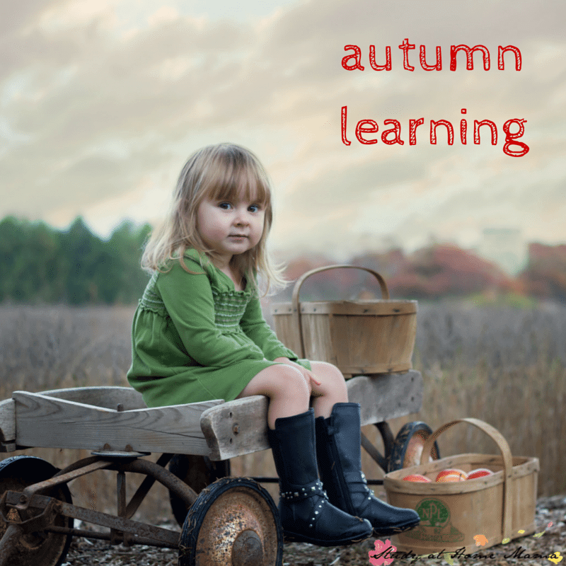 autumnlearning (1)