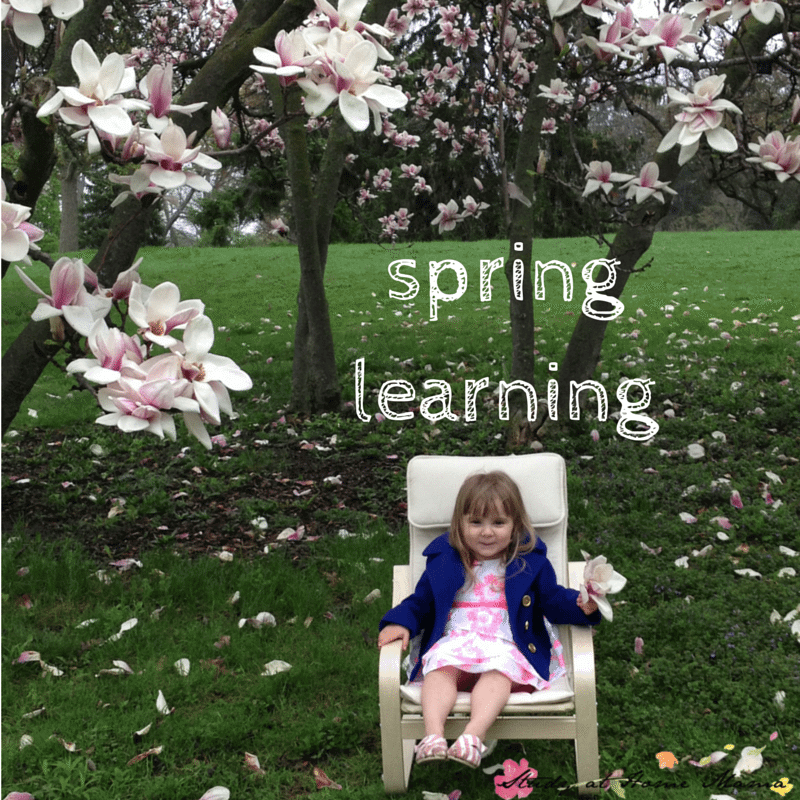 springlearning