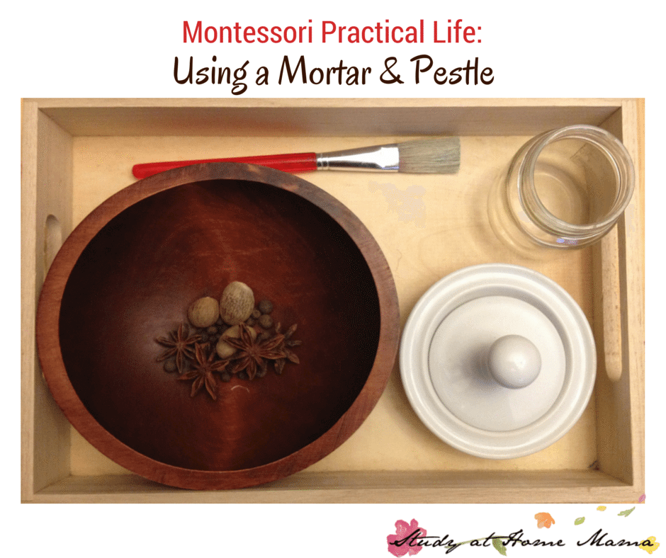 "practical life and montessori in the The baby is not an inert or passive being, but a ""creative"" individual, actively struggling to grow and learn there is an unconscious urge, a life."