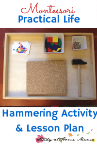 Montessori Practical Life Lesson: Hammering Activity