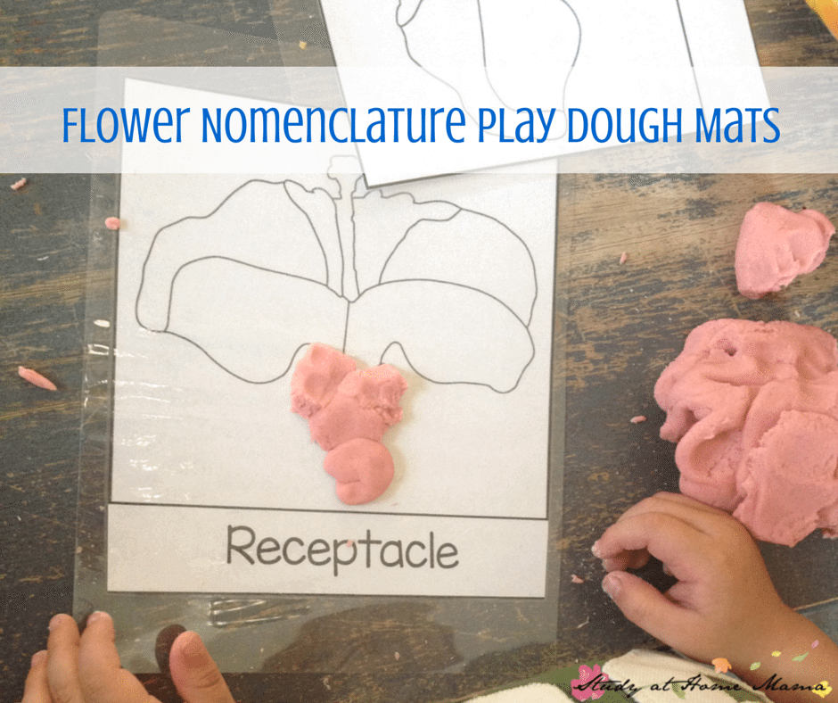 Flower Nomenclature Play Dough Mats