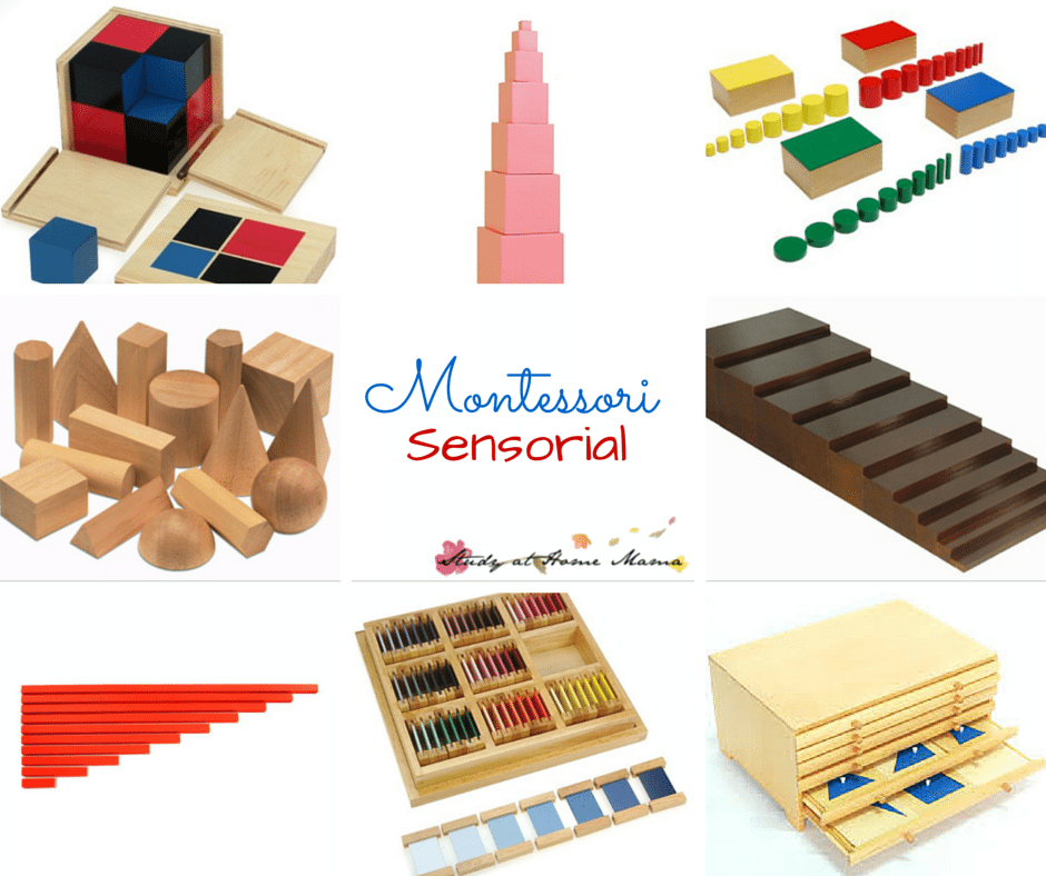 Montessori Sensorial - everything you ever wanted to know about Montessori Sensorial, including the best materials, honest reviews, lessons, and more!