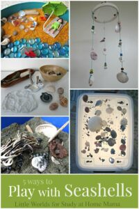 5 Ways to Play with Seashells