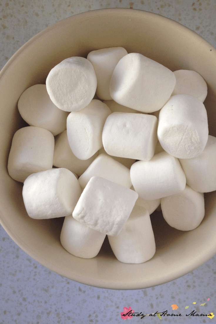 How to make smores cake - first, microwave your marshmallows