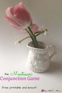 Flower Arranging with the Conjunction Game