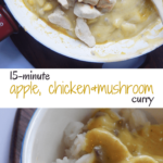 Quick Apple Chicken Curry Recipe