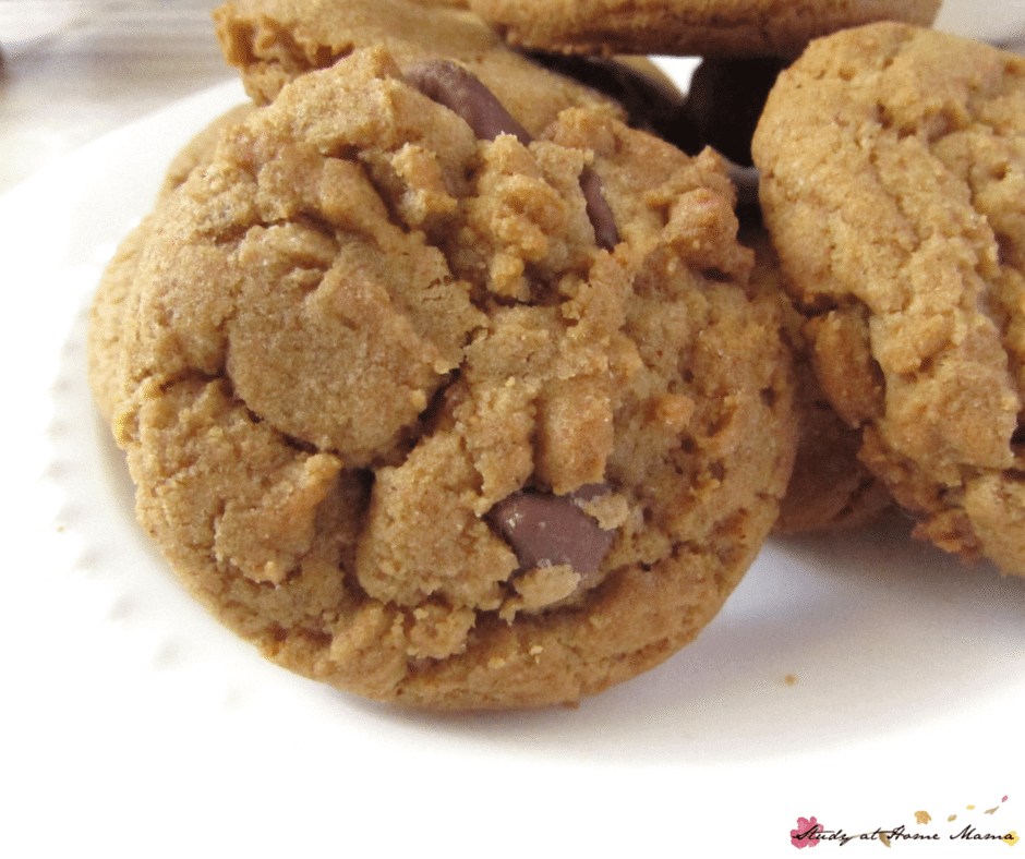 Chocolate Chip Cookie recipe -- these are the best chocolate chip cookies you will ever have! Buttery with a slight caramel flavour... make these now!