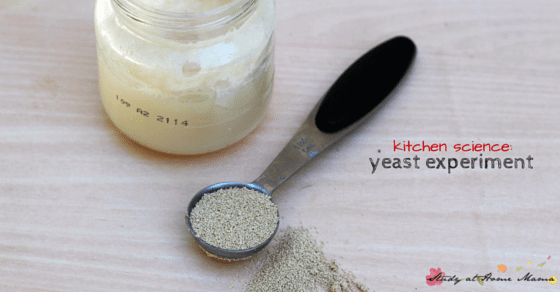 Kids kitchen science experiment for yeast activation - figure out the best environment for how to activate yeast