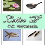 CVC Worksheets: P CVC Words