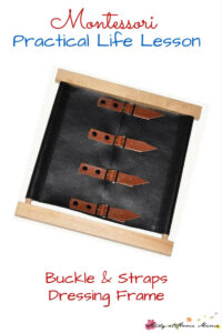 Montessori Practical Life Lesson: Buckles and Straps Dressing Frame