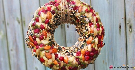 Looking for an easy Bird Feeder Kids Can Make? A beautiful Bird Feeder Wreath to decorate your yard and attract the birds. Perfect for a bird unit study or your nature-loving child