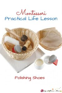Montessori Practical Life Lesson: Polishing Shoes