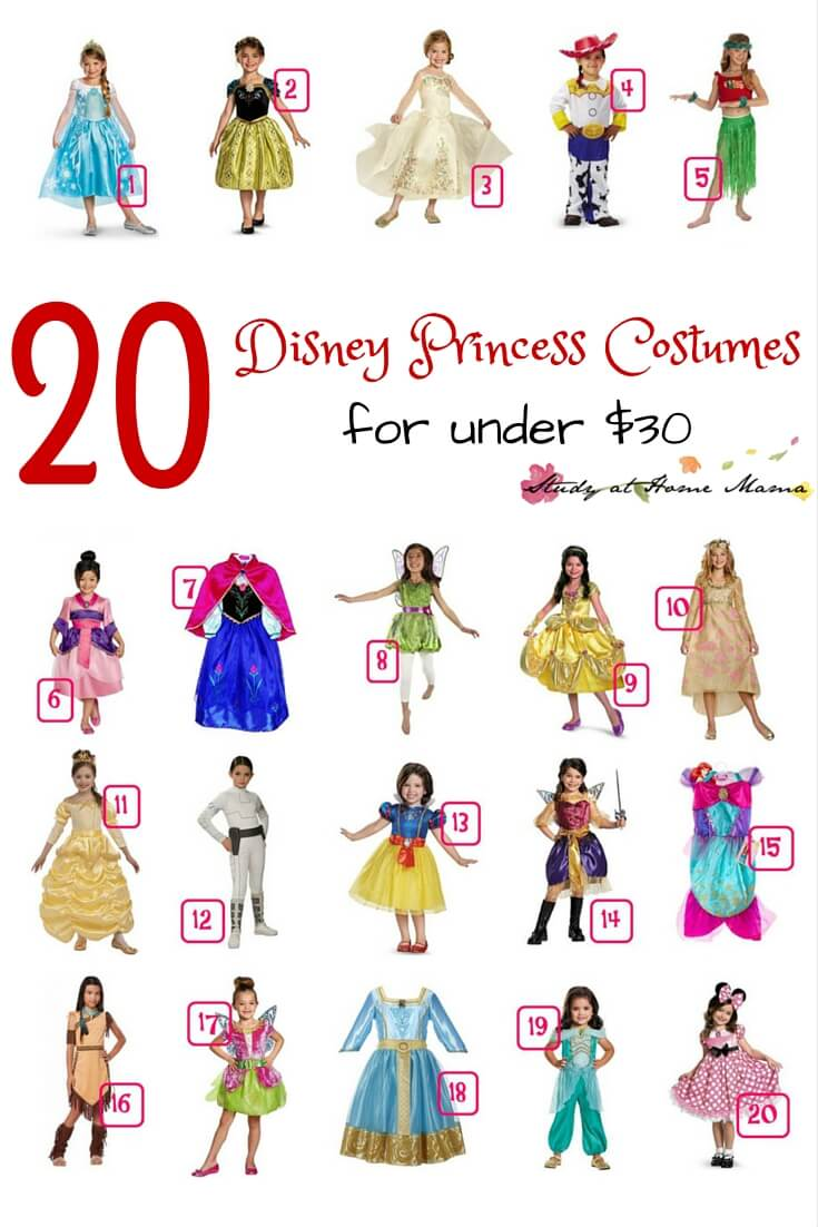 20 Disney Princess Costumes for under $30 - great girl costume ideas for your Disney Princess lover
