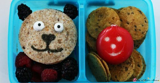 Bear Bento Box - a great lunch box idea for a teddy bear picnic, or during a forest animal unit study.
