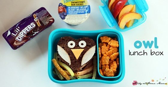 Owl Lunch Box Idea - easy fall-themed lunch box idea for kids