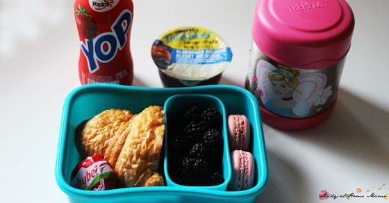 Yum! This Madeline lunch box idea is a great way to explore French culture with your tastebuds. Perfect for a France unit study
