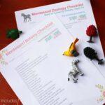 Montessori Culture 3-6 Checklists