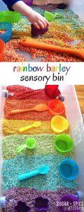 rainbow barley sensory bin (2)