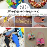 50+ Ideas for a Preschool Bird Unit Study