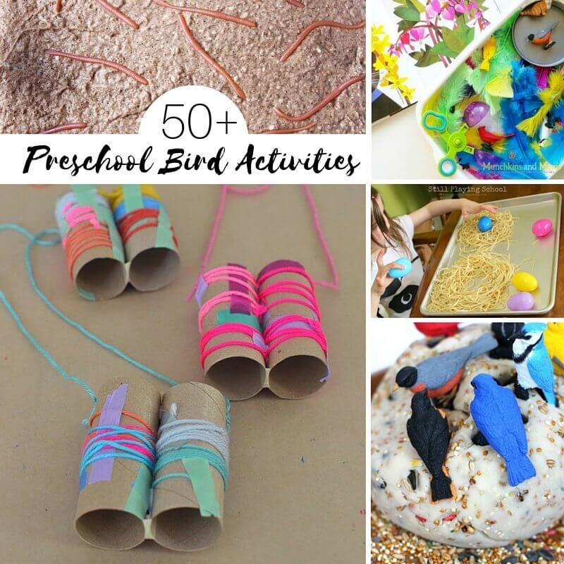 Preschool Bird Activities