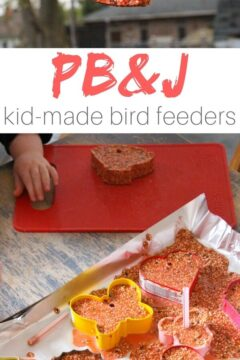 PB&J Bird Seed Ornaments