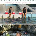 Best Things to Do in Bermuda for Families