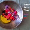 Emotions Sensory Bins