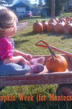 Pumpkin Week – Part One