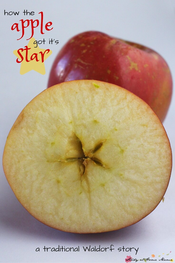 A twist on the traditional Waldorf Apple Story: a fairy story for children about how the apple got its star, which children can then discover for themselves