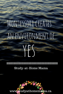 Why We Do Montessori Trays: An Environment of Yes