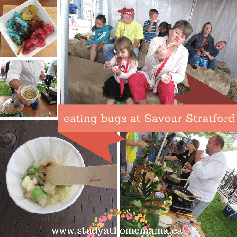eating bugs at Savour Stratford