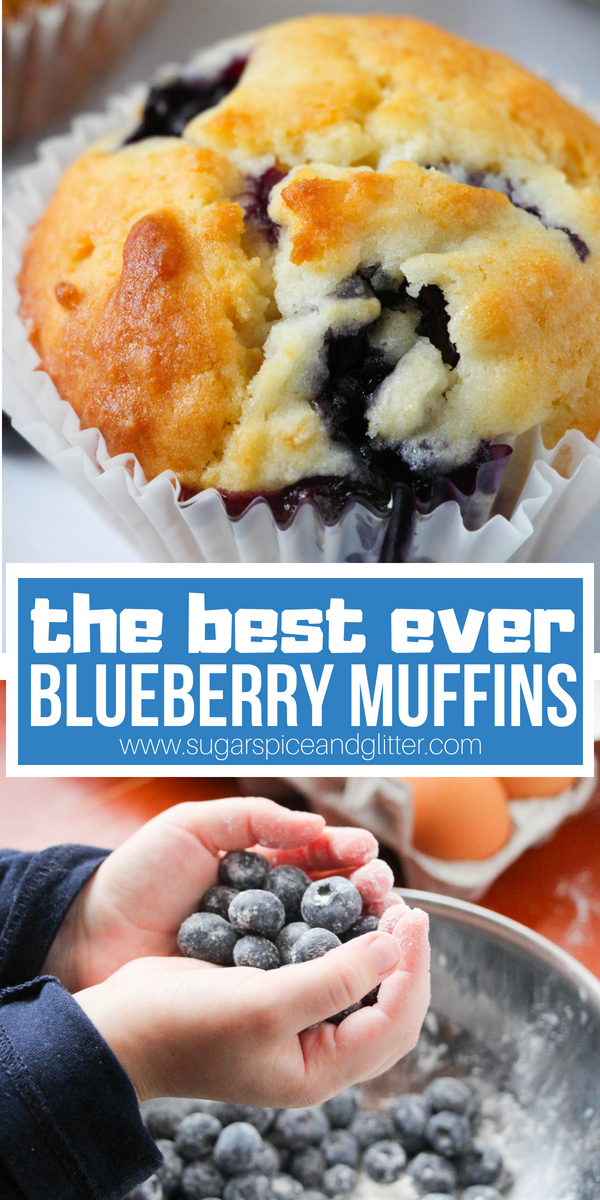 These best ever blueberry muffins have a touch of maple syrup, for super fluffy blueberry muffins with golden crunchy tops - seriously, bakery quality muffins made by kids