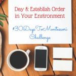 Establishing Order in My Environment