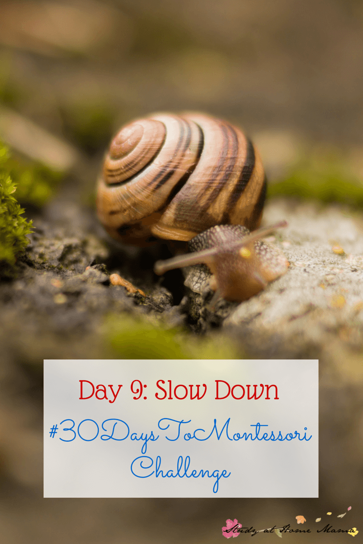 Slow Down to a Child's Pace and Allow them to Show you What is Important to them. Part of the #30daystoMontessori Challenge