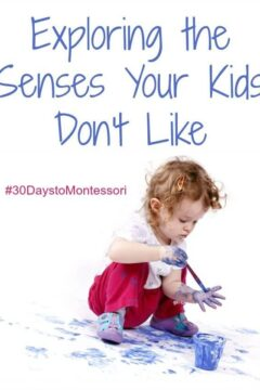 Exploring the Senses Your Kids Don't Like