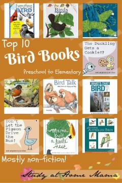 Top Ten Bird Books for Montessori Preschoolers