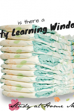 "Is There a ""Potty Learning Window""?"