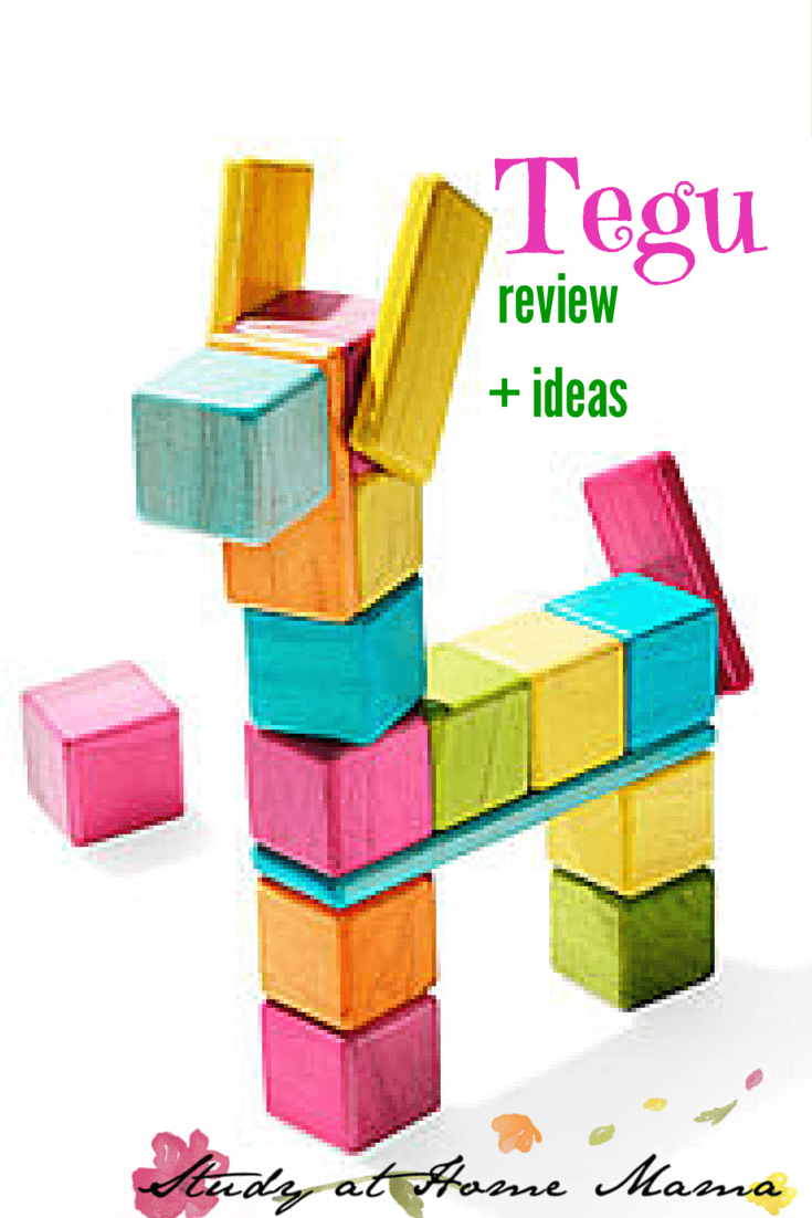 Tegu Blocks Review Ideas Sugar Spice And Glitter