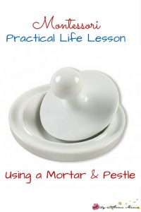 Montessori Practical Life Lesson: Using a Mortar & Pestle