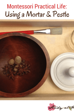 Practical Life: Using a Mortar and Pestle